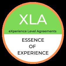 XLA Essence Of Experience KnowledgeAdd Logo